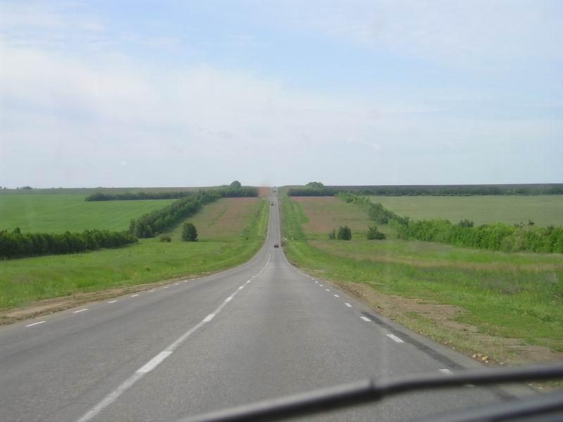 После Саратова растительность вдоль дороги редеет...