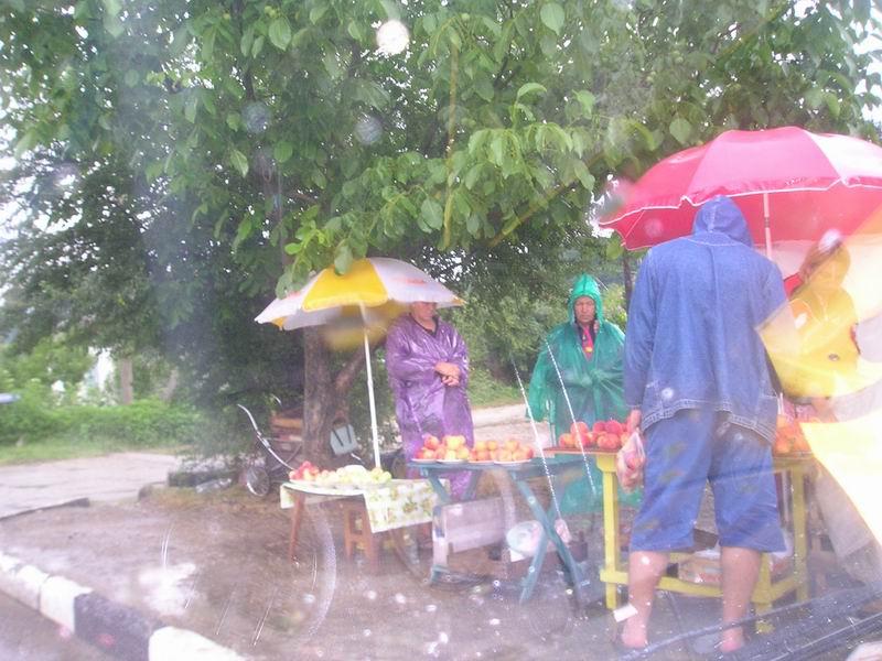 Придорожная торговля не останавливается даже в дождь