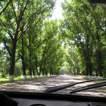 Дороги в Краснодарском крае. Эх, нам бы такие...