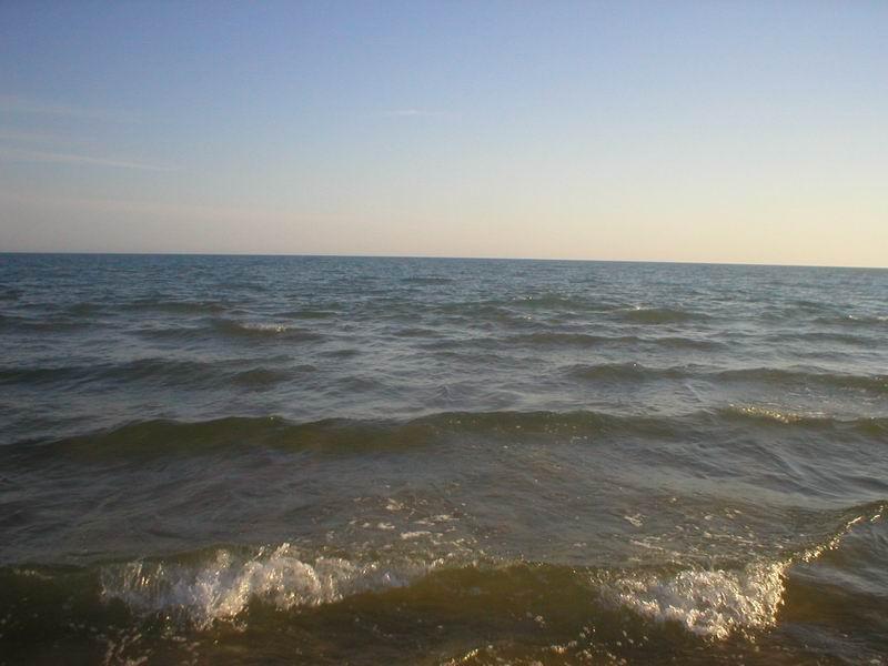 Черное море, Витязево
