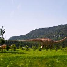 А мимо пробегали динозавры